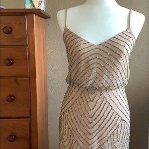 Adrianna Papell beaded dress- stunning!